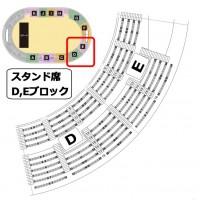神戸ワールド記念ホール スタンド席D,Eブロックの詳細座席表